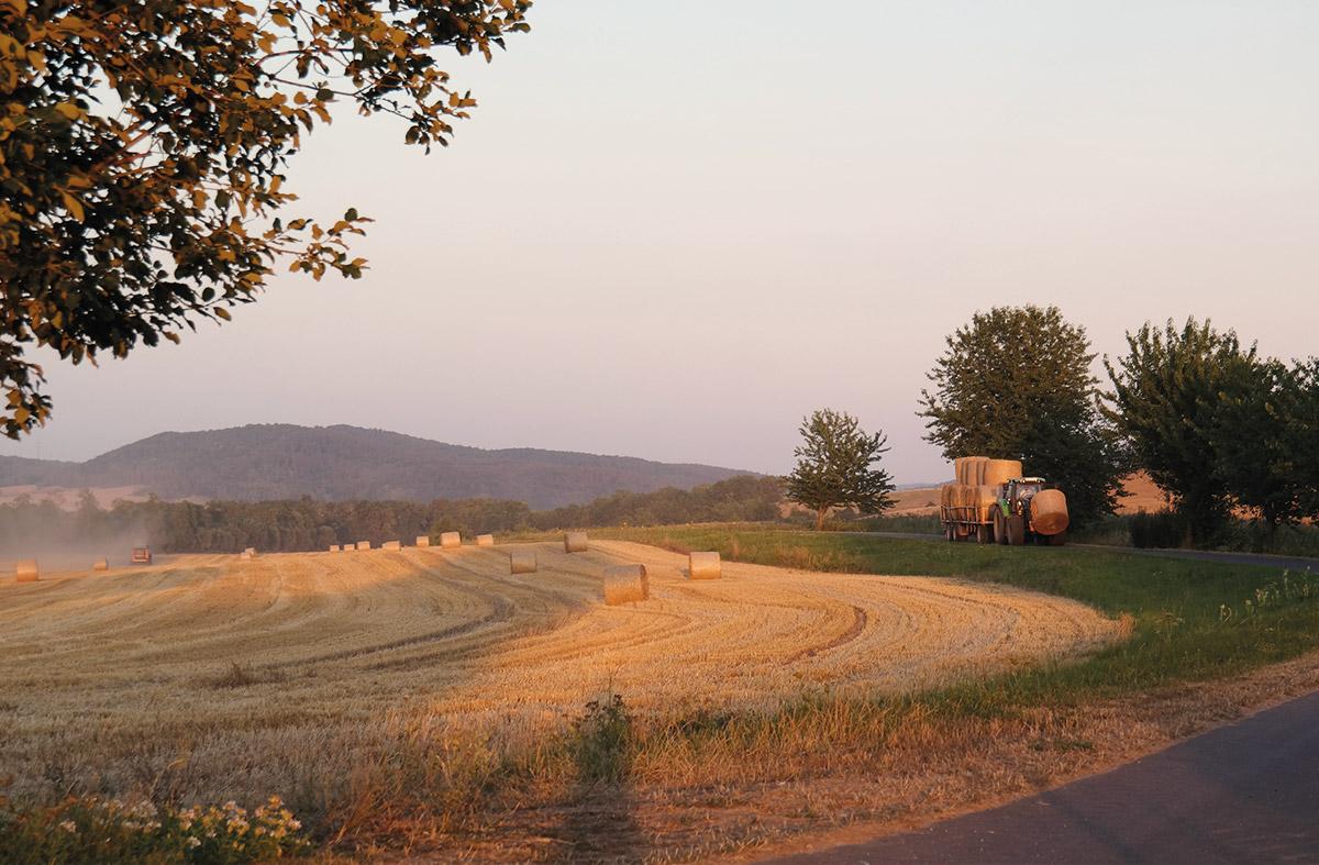 Feld mit Strohballen am Hof Rösebach